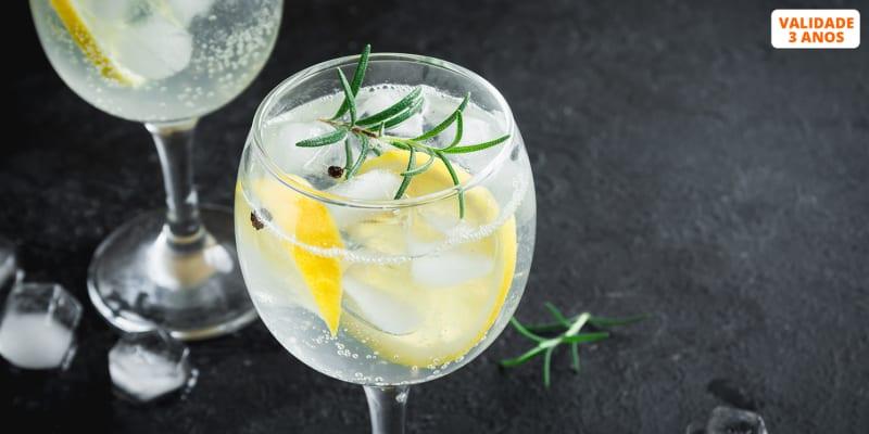 Gin & Petiscos para Dois no Jet 7.5   Marina da Figueira da Foz