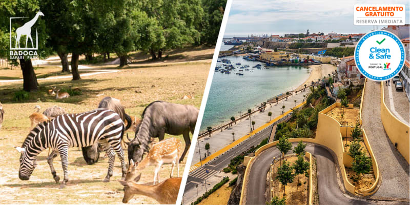 Sinerama Hotel Apartamento - Sines   Estadia em T0 com Opção Badoca Safari Park