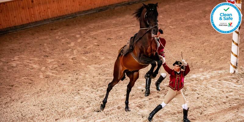 Manhãs da Escola Portuguesa de Arte Equestre a Dois ou em Família | Picadeiro Henrique Calado - Belém