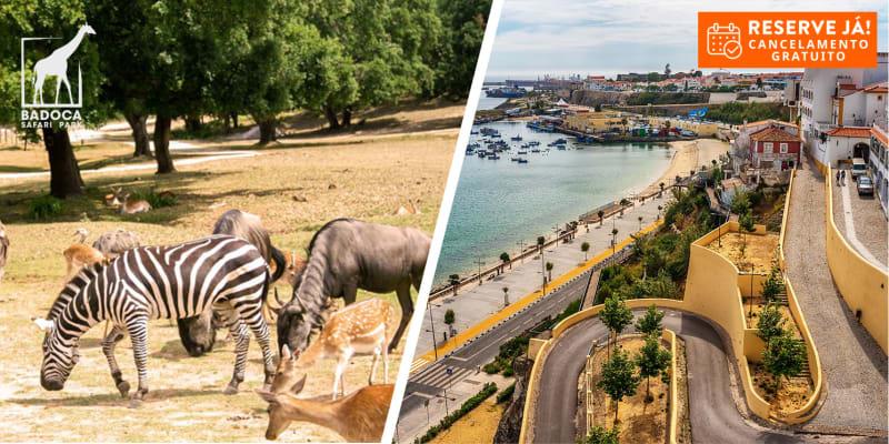 Sinerama Hotel Apartamento - Sines | Estadia em T1 com Opção Badoca Safari Park