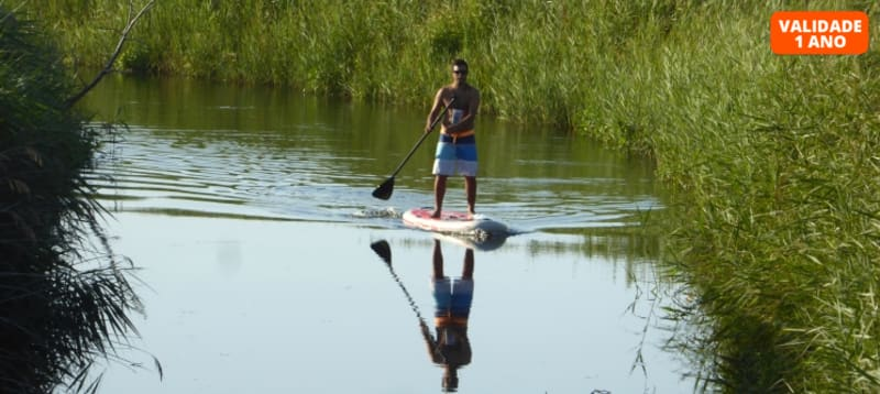 3 Horas de Stand Up Paddle Best Spots | 1 ou 2 Pessoas na Natureza do Porto ou de Braga!