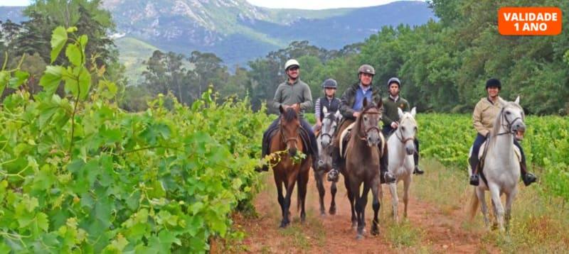 Passeio a Cavalo com Almoço | 5 Horas | Serra do Louro - Palmela