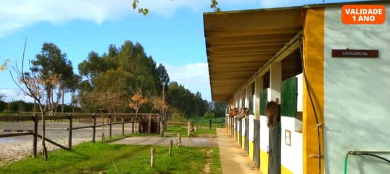 Visita à Quinta Pedagógica e à Casa dos Patudos Museu de Alpiarça + Actividade à Escolha | Viva o Ribatejo a Dois!
