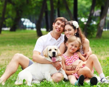 Sessão Fotográfica Pets & Family