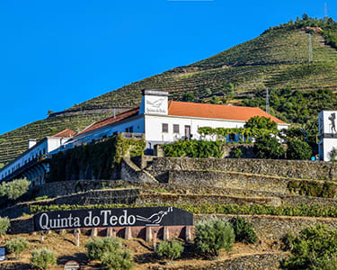 Tour no Douro para Dois com Prova de Vinho e Visita ao Pinhão   2 Horas