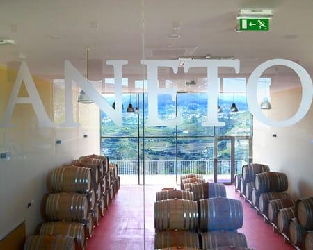 Visita à Adega + Prova de 6 Vinhos para Dois com Oferta de Garrafa de Vinho | Aneto Wines - Lamego