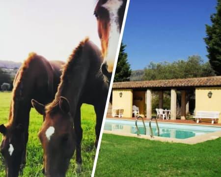 Agro-Turismo Quinta do Pinheiro - Serra da Estrela   Estadia em Apartamento com Piscina & Opção Passeio a Cavalo