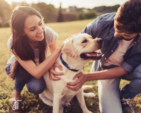 Sessão Fotográfica «Family & Pets» em Outdoor! Até 6 Pessoas e 2 Animais   Lisboa