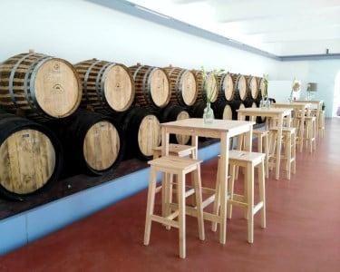 Prova de Vinhos e Degustação de Produtos Regionais a 2
