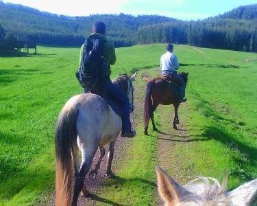 Passeio a Cavalo | 2 Pessoas - 1h | Galope no Campo