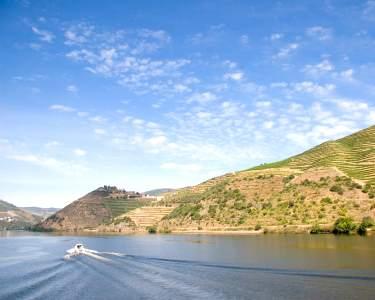 Porto-Régua de Comboio e Barco c/ Almoço | 2 Pessoas - 10h | Tomaz do Douro