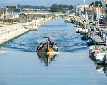 Cruzeiro de Moliceiro, Sightseeing Urbano e Caixa de Doces Típicos para 2