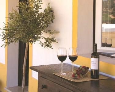 Wine Tour com Prova de Vinhos e Degustação a 2