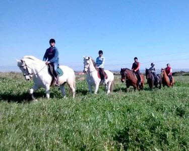 Passeio a Cavalo | 1 Pessoa - 1h | Quinta da Boa Vista