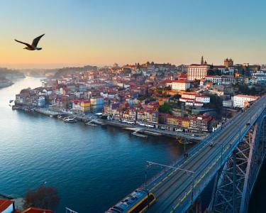 Cruzeiro 6 Pontes + Cálice Vinho do Porto a Bordo