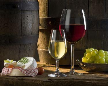 Rota de Vinhos da Península de Setúbal | Degustação de Vinhos e Prova de Queijos
