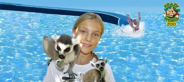 Krazy World Zoo - Algarve   Dia de Diversão Máxima na Natureza - Criança e/ou Adulto