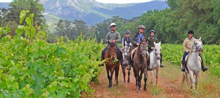 Passeio a Cavalo com Almoço   5 Horas   Serra do Louro - Palmela