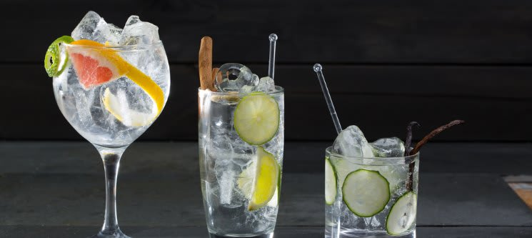 Workshop Premium de Gins Tónicos | 3 Horas | Lisboa