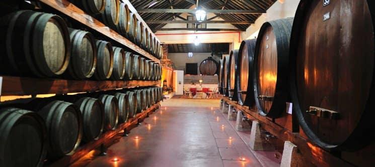 Adega Venâncio da Costa Lima | Visita e Provas de Vinho para Dois | Palmela