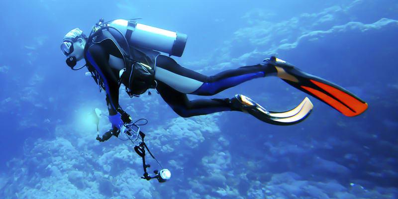 Discover Scuba Diving - Arrábida | Baptismo de Mergulho em Piscina e Mar