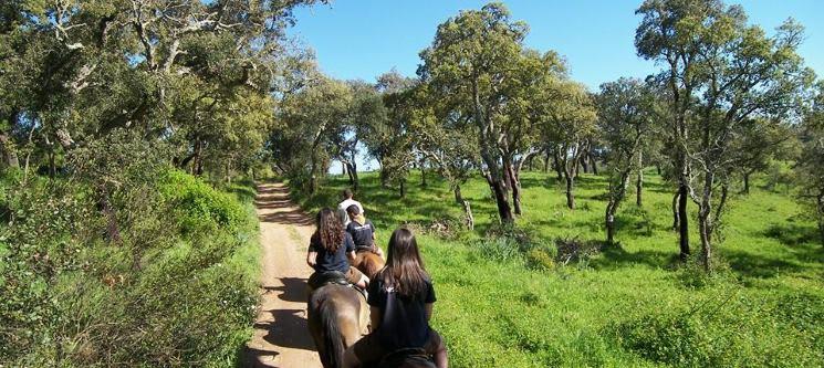 Passeio a Cavalo pelo Campo Alentejano a Dois   1h ou 3h a Passo, Trote e Galope!