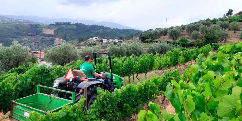 Experiência de Condução de Tractor com Alfaia Agrícola para 1 ou 2 Pessoas  Viseu