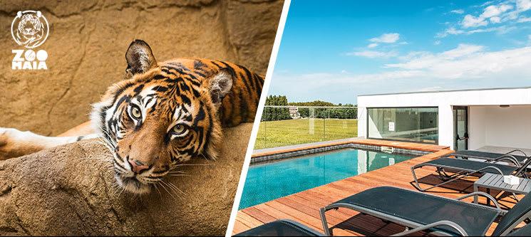 Oporto Airport & Business Hotel 4* - Maia | Estadia em Família com Entradas no Zoo de Maia