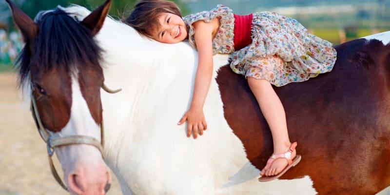 Dia em Família com Passeio a Cavalo | Quinta do Banco - Alenquer