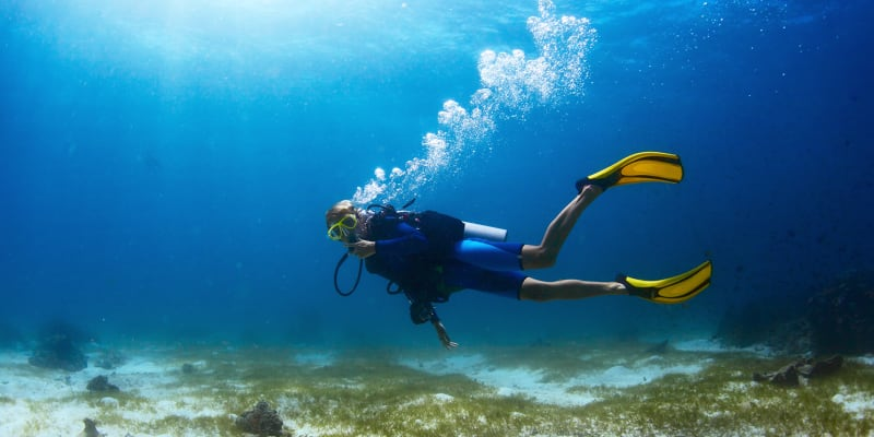 Curso e Certificação PADI - Scuba Diver 2 Dias! Algarve Divexperience