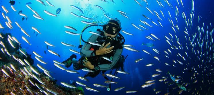 Primeiro Nível de Mergulho - Scuba Diving | Cascais