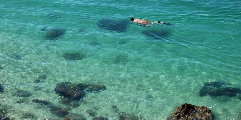 Snorkeling a Dois 3H | Experiência de Sonho! Into the Nature - Arrábida