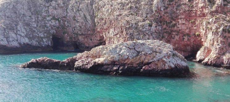 Peniche-Berlengas a Dois   Passeio de Barco + Opção Visita às Grutas ou Snorkeling