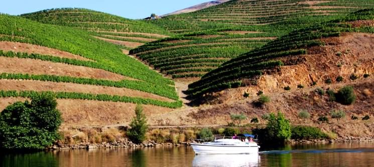 Maravilhoso Cruzeiro em Iate pelo Douro e Almoço Romântico para Dois | 6 Horas