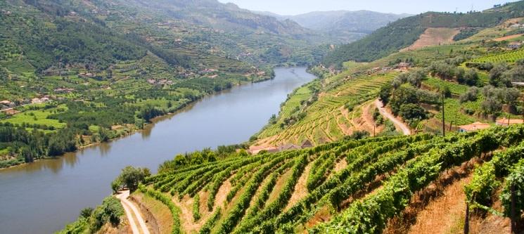 Cruzeiro na Régua a Dois | 50 Minutos | Programa Romântico pelas Águas do Douro!