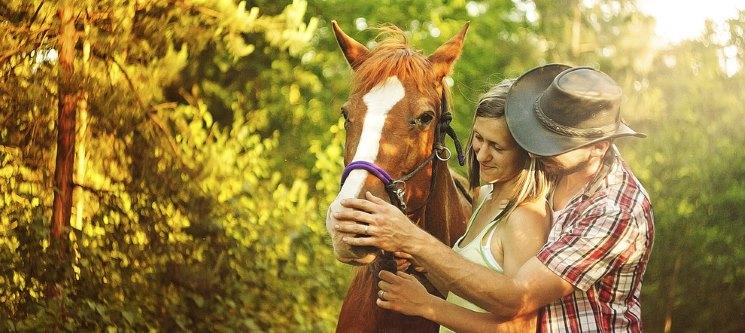 Presente Perfeito: Passeio Romântico de Cavalo à Beira Rio | Aveiro