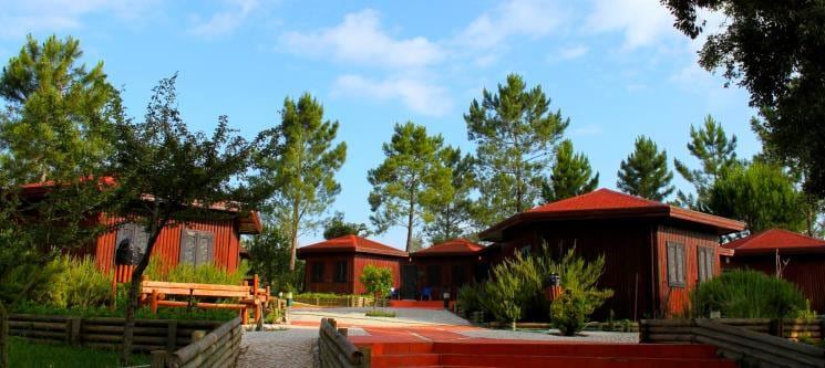 Parque Ambiental do Alambre - Portinho da Arrábida | 1 a 7 Noites em Bungalow até 4 Pessoas