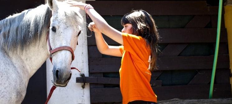 Baptismo a Cavalo + Visita à Quinta + Piquenique para Dois | 2h30 | Aveiro