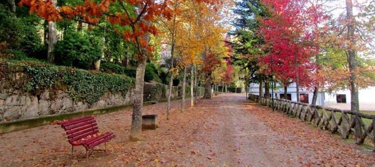 Casa Fontes - Vila Real   1 ou 2 Noites em Plena Natureza!