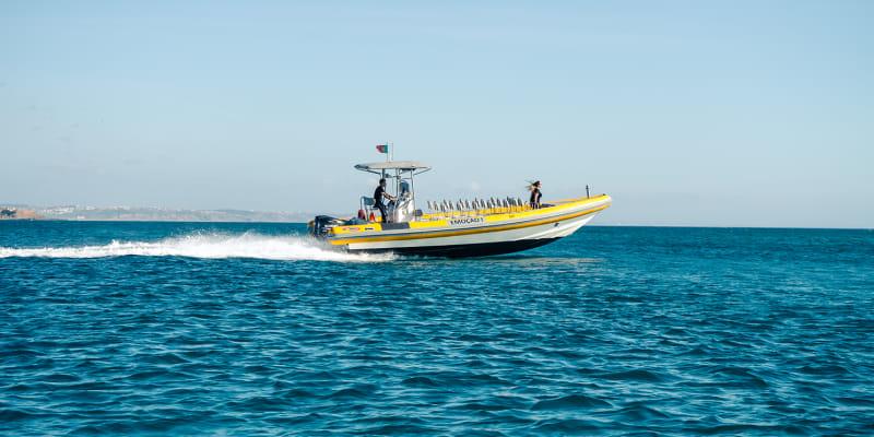 Passeio de Barco c/ Observação de Golfinhos para Dois   2 Horas   Tróia-Setúbal - Sado Emotion