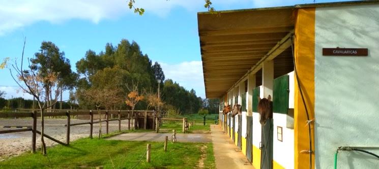 Visita à Quinta Pedagógica e à Casa dos Patudos Museu de Alpiarça para 2 | Viva o Ribatejo!