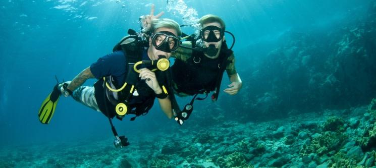 Mergulho de Mar nas Berlengas «Try Scuba Sea» | 4 Horas para 1 ou 2 Pessoas | JustDive