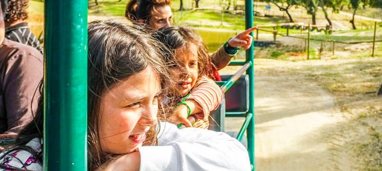 Diversão no Monte Selvagem | Entrada de Criança ou de Adulto