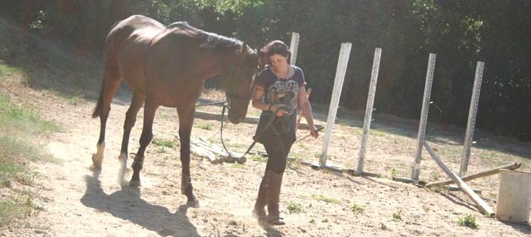 Baptismo a Cavalo para 1 ou 2 Pessoas | Alenquer