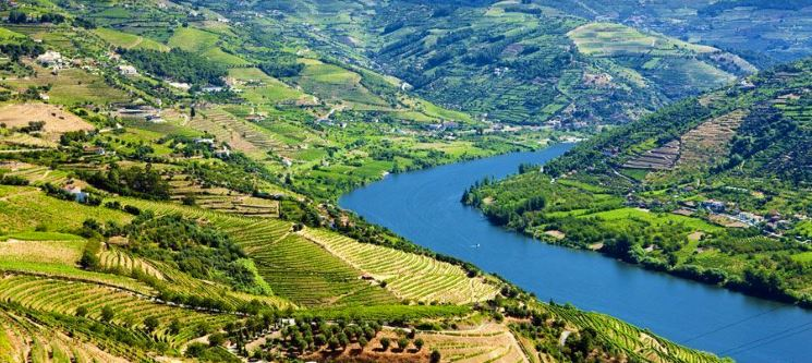 Passeio Porto-Régua para Dois + Almoço + Vinho do Porto + Lanche | Douro Encantado!