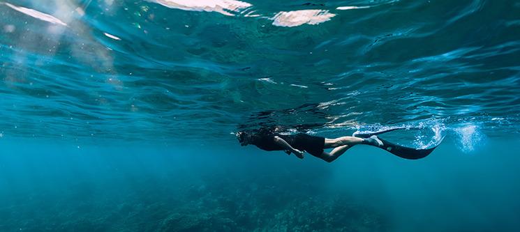Mergulho no Mar de Sesimbra com Passeio de Barco   1 ou 2 Pessoas   Anthia Diving Center