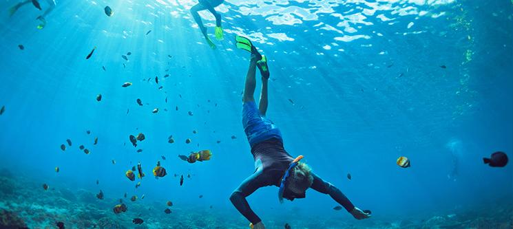 Snorkeling à Volta da Ilha de Santa Maria - Açores | Até 3 Horas | 1 ou 2 Pessoas