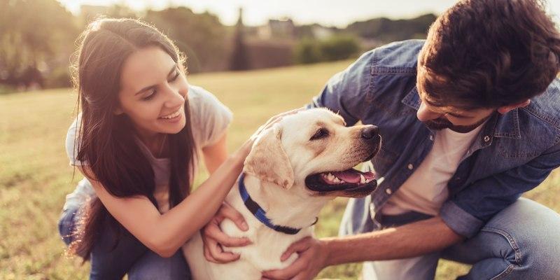 Sessão Fotográfica «Family & Pets» em Outdoor! Até 6 Pessoas e 2 Animais | Lisboa