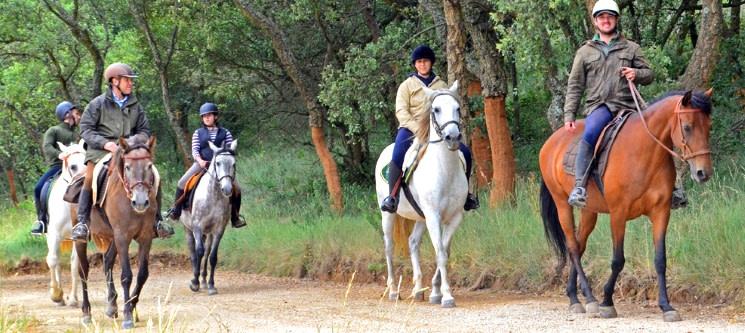 Passeio a Cavalo na Serra do Louro - Arrábida | 1 ou 2 Pessoas | Terra Una