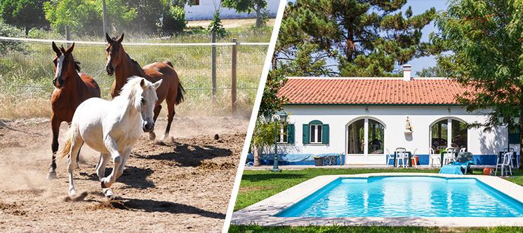 Dia de Sonho no Campo a Dois: Baptismo a Cavalo + Almoço + Opção Piscina | The Camp
